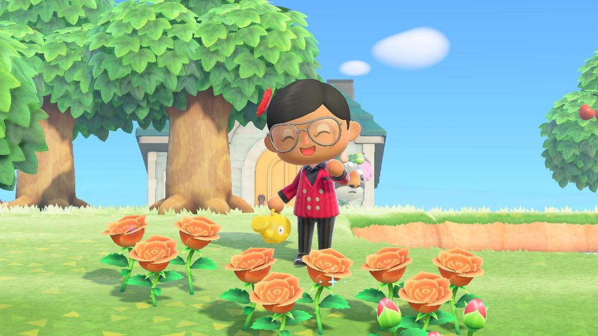 'Animal Crossing: New Horizons' Servers Down Temporarily