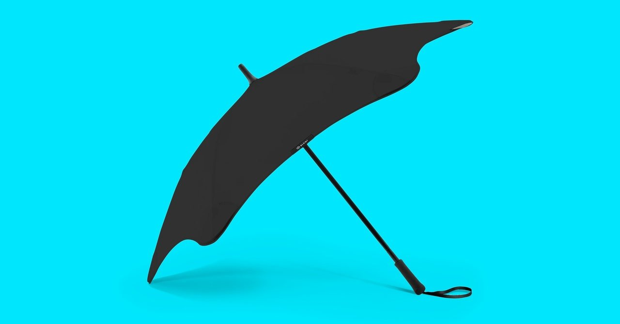 7 Best Umbrellas for 2020: Windproof, Cheap (and a Tiny One)
